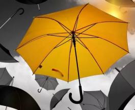 Zoom sur les différents types de parapluies